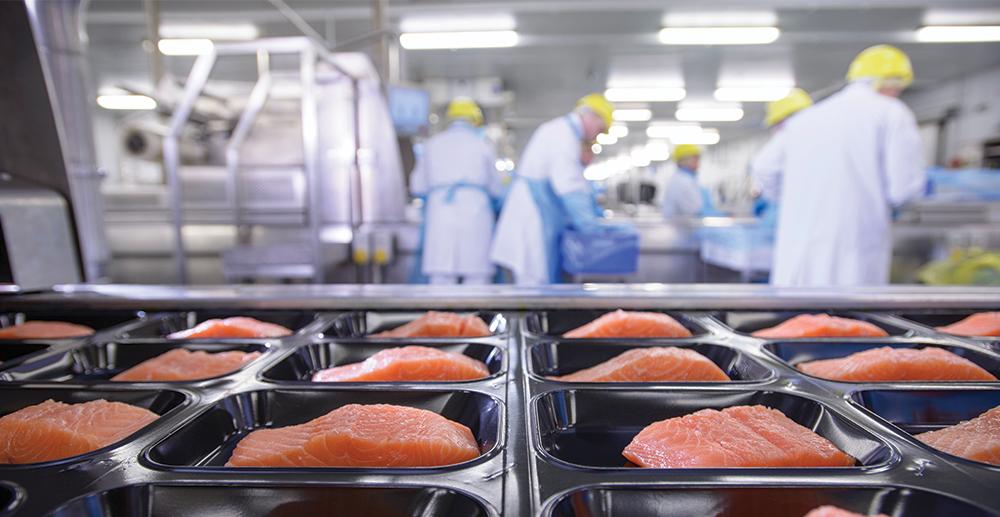 Food Trading Companies In Uae